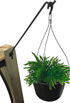 RMP Plant Hanger with Wall Bracket